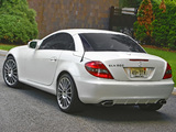 Mercedes-Benz SLK 300 Diamond White Edition US-spec (R171) 2009 photos