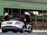 Edo Competition Mercedes-Benz SLR McLaren Roadster (R199) 2010 pictures