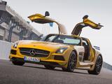 Images of Mercedes-Benz SLS 63 AMG Black Series (C197) 2013