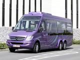 Images of Mercedes-Benz Sprinter City 77 (W906) 2010–13