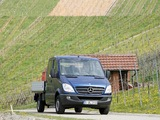 Mercedes-Benz Sprinter Double Cab Dropside (W906) 2006–13 images