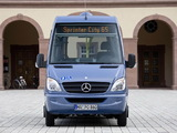 Mercedes-Benz Sprinter City 65 (W906) 2006 pictures