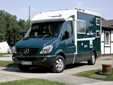 Tikro Mercedes-Benz Sprinter (W906) 2007 photos