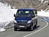 Mercedes-Benz Sprinter 4x4 (W906) 2009–13 images