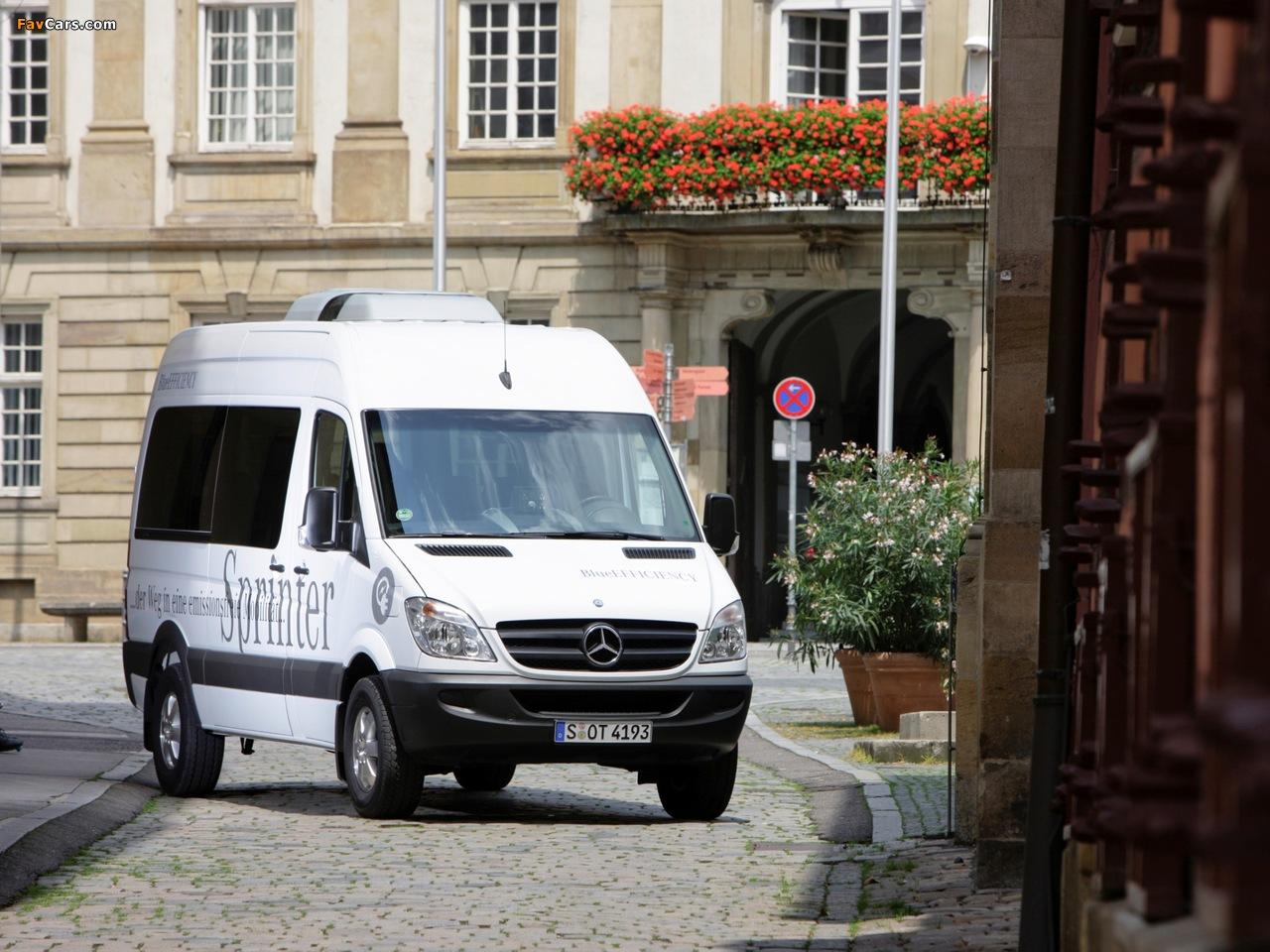 Mercedes-Benz Sprinter BlueEfficiency (W906) 2009–13 images (1280 x 960)