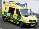 Delfis Mercedes-Benz Sprinter Ambulance (W906) 2009 pictures