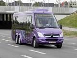 Mercedes-Benz Sprinter City 77 (W906) 2010–13 photos