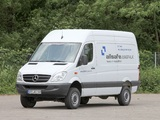 Photos of Mercedes-Benz Sprinter High Roof Van 4x4 (W906) 2009–13