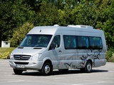 Pictures of Mercedes-Benz Sprinter Travel 55 (W906) 2006–13