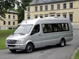 Pictures of Mercedes-Benz Sprinter Travel 45 (W906) 2006–13