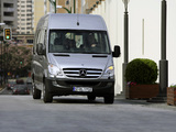 Pictures of Mercedes-Benz Sprinter Transfer 35 (W906) 2006–13