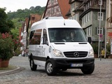 Pictures of Mercedes-Benz Sprinter BlueEfficiency (W906) 2009–13