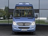 Pictures of Mercedes-Benz Sprinter City 77 (W906) 2010–13