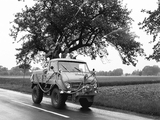 Images of Mercedes-Benz Unimog U25 (401) 1953–55