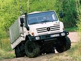 Mercedes-Benz Unimog U5000 2000–13 photos