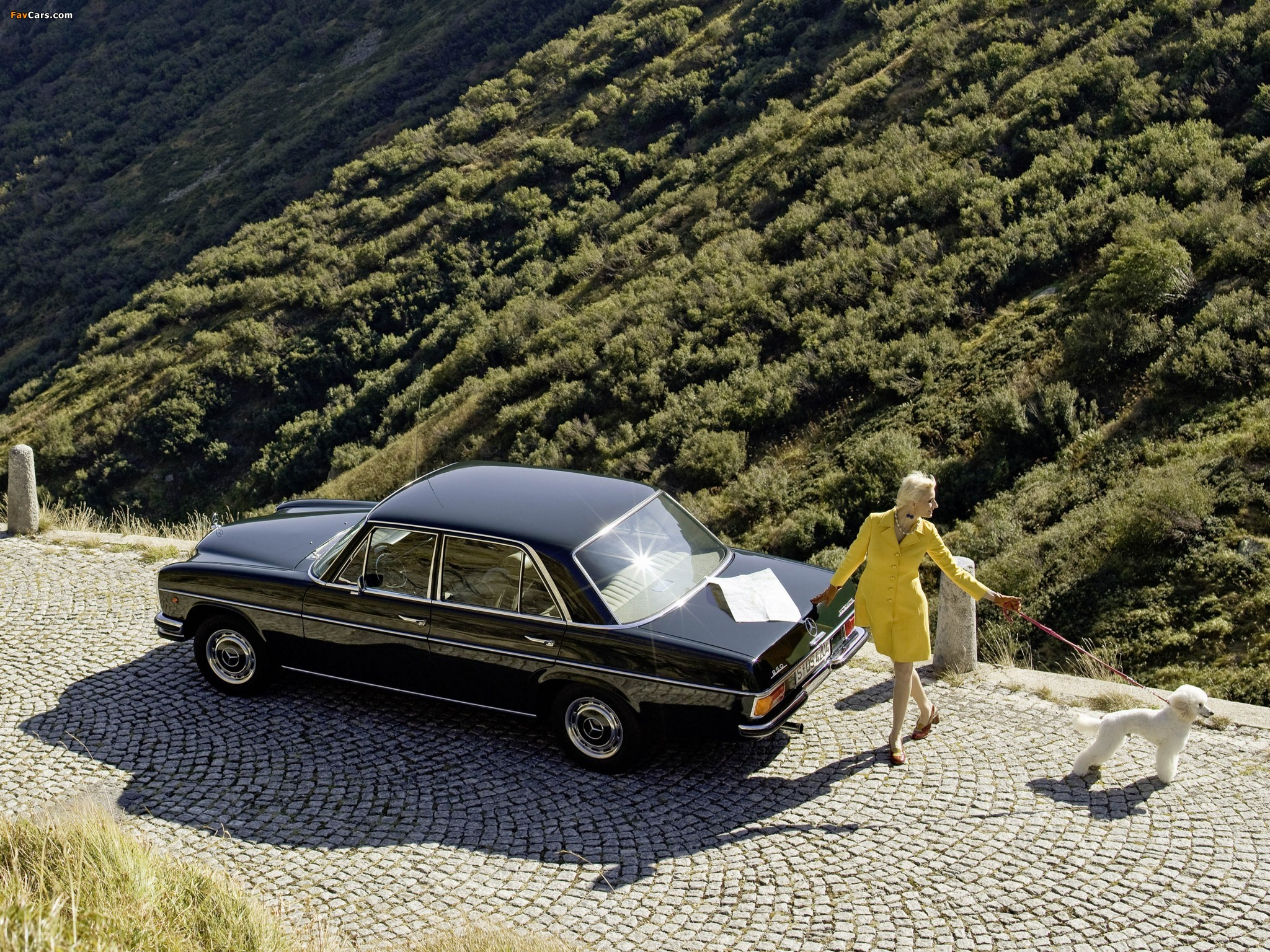 Mercedes Benz 250 W114 115 1969 76 Images 2048x1536