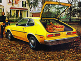 Mercury Bobcat 1975 photos