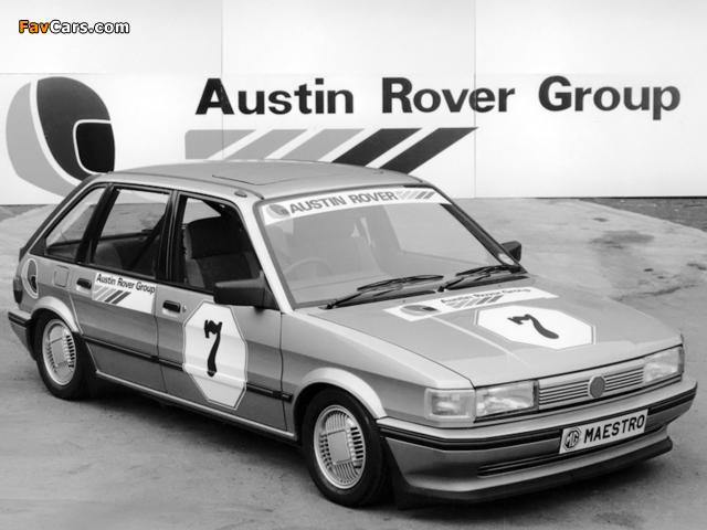 MG Maestro Rallysprint 1983 images (640 x 480)