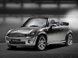 Mini Cooper Cabrio by Kenneth Cole (R57) 2010 images