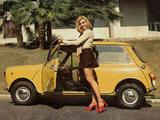 Pictures of Mini (ADO20) 1969–90