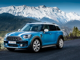 MINI Cooper S Countryman ALL4 Exterior Optic Pack (F60) 2017 images