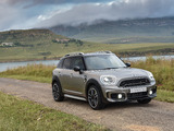 Photos of MINI Cooper S Countryman ALL4 ZA-spec (F60) 2017