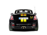Photos of AC Schnitzer MINI Cooper S Cabrio Color Line (R58) 2013