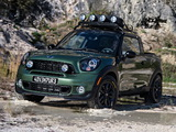 Pictures of MINI Paceman Adventure (R61) 2014