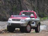 Mitsubishi Pajero Field Guard Concept 1993 pictures