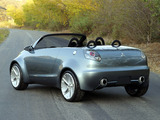 Mitsubishi Tarmac Spyder Concept 2003 wallpapers
