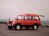 Pictures of Mitsubishi Pajero Wagon High Roof (I) 1983–91