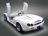 Pictures of Mitsuoka Orochi Nude Top 2005