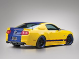 Photos of Mustang WD-40 Concept 2010
