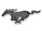 Photos of Mustang