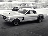 Images of Mustang