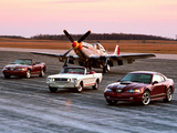Mustang pictures