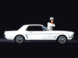 Images of Mustang Coupe 1964