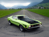 Images of Mustang Boss 351 1971