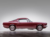 Mustang Fastback 1965 images