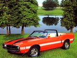 Shelby GT350 Convertible 1969 pictures