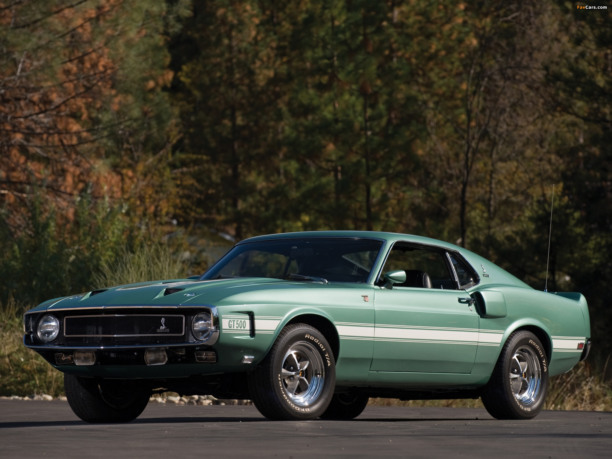 Shelby GT500 1969–70 pictures (2048 x 1536)