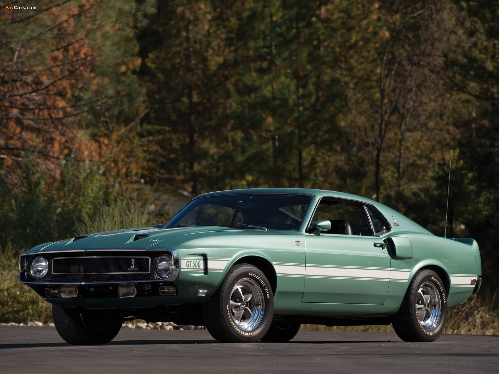 Shelby GT500 1969–70 pictures (1600 x 1200)