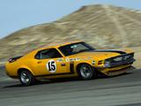 Mustang Boss 302 Trans-Am Race Car 1970 images