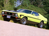 Mustang Boss 351 1971 photos