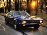 Mustang Hardtop 1971 pictures