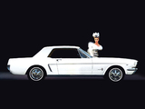 Pictures of Mustang Coupe 1965