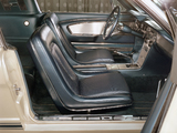 Pictures of Mustang GT Fastback EBF II 1965