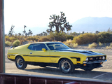 Pictures of Mustang Boss 351 1971