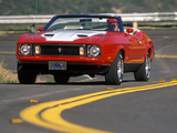Pictures of Mustang Convertible 1973