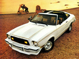Mustang T-Roof 1974–78 photos